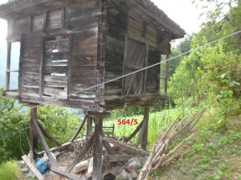 Artvin Borçka Bankadan Satılık 1950 m2 Bağ & Bahçe