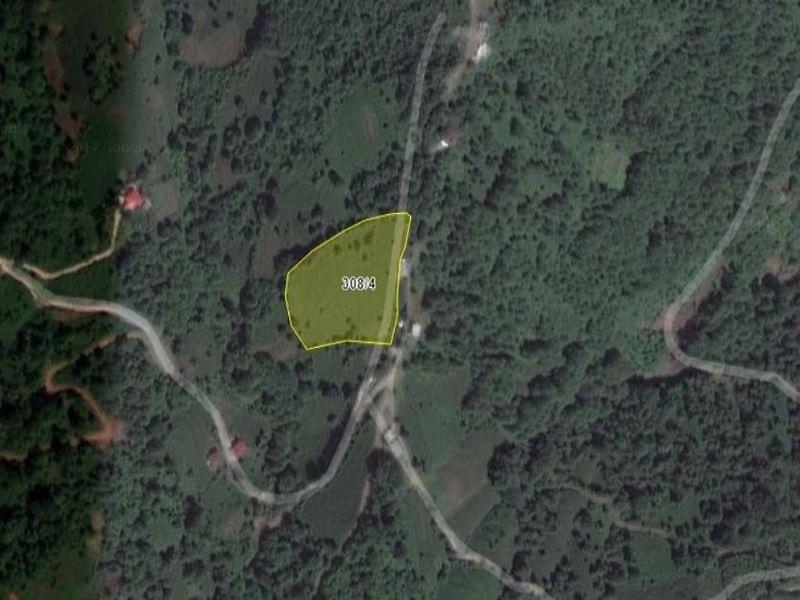 Artvin Hopa Bankadan Satılık 8490 m2 Bağ & Bahçe