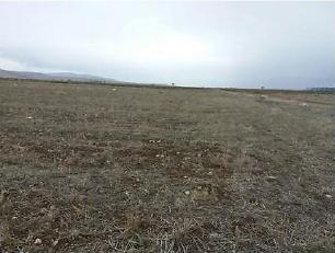 Afyonkarahisar Sandıklı Kusura Köyünde 31.500 m2 Tarla