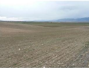 Afyonkarahisar Sandıklı Kusura Köyünde 20350 m2 Tarla