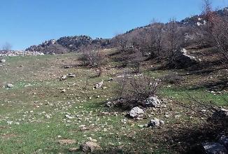 Antalya Alanya Bankadan Satılık 5193 m2 Tarla