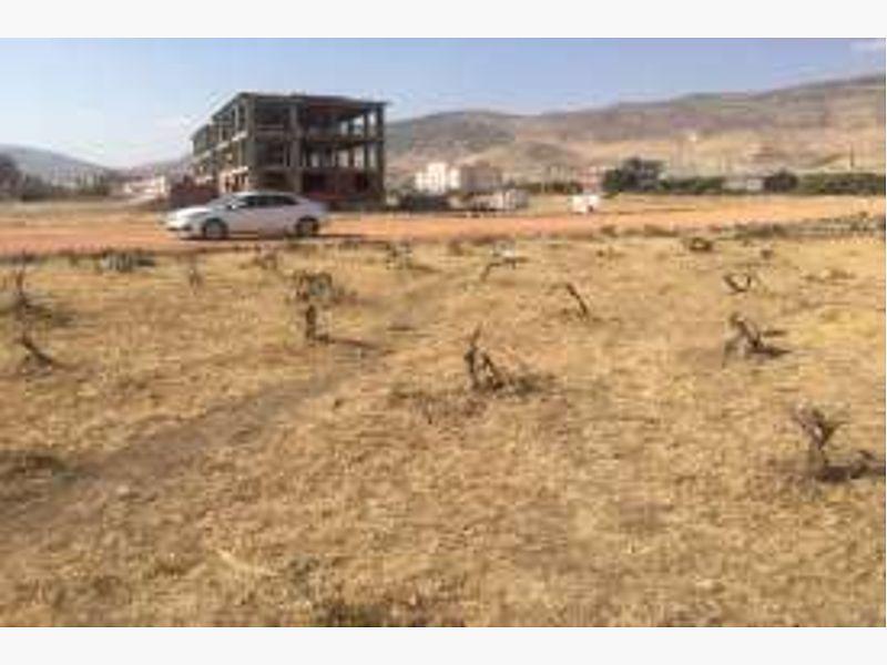 Diyarbakır Hani Bankadan Satılık 1700 m2 İmarlı