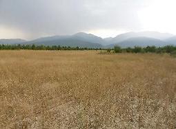 Afyonkarahisar Sultandağı'nda 16.993 m2 Tarla