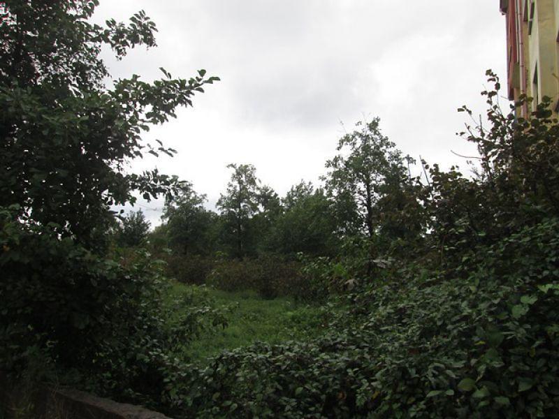Giresun Eynesil Bankadan Satılık 3950 m2 Bağ & Bahçe
