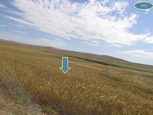 Şanlıurfa Karaali Köyünde 47.600 m2 Tarla