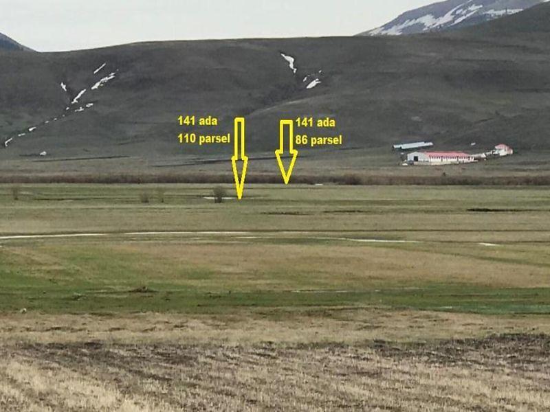 Ardahan Dedegül Köyü Çiftlik Mevkiinde 3919 m2 Tarla