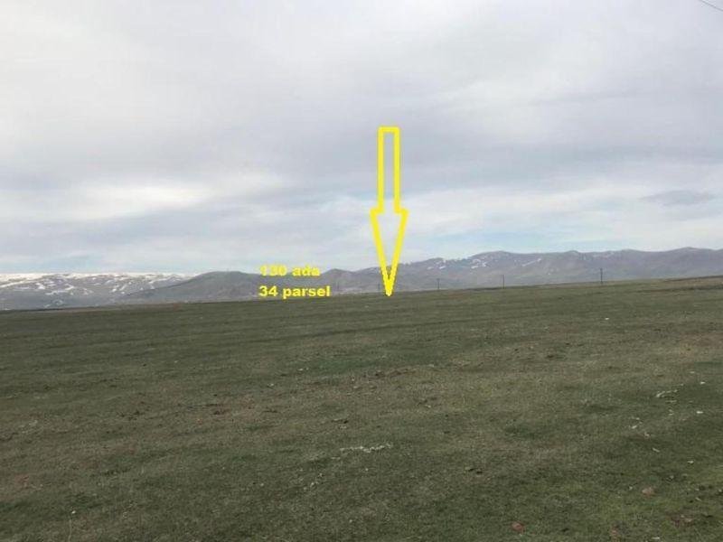 Ardahan Dedegül Köyü Danızkom Altı Mevkiinde 2673 m2 Tarla