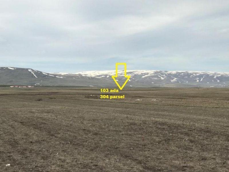 Ardahan Dedegül Köyü Kırtarlar Mevkiinde 4211 m2 Tarla