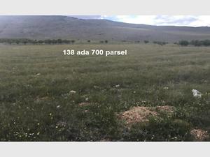 Afyonkarahisar Şuhut Karaadilli Erenler Mahallesinde 17.500 m2 Tarla