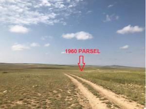 Konya Cihanbeyli İnsuyu Mahallesinde 139.800 m2 Tarla