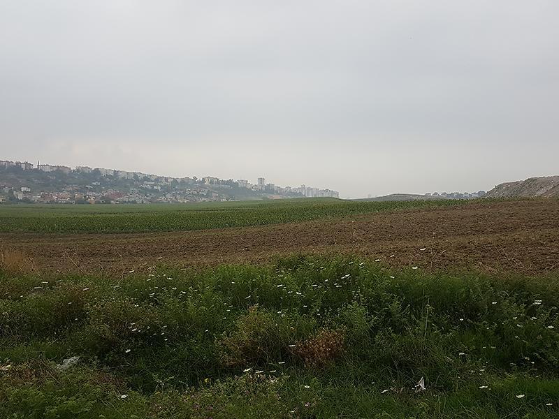 Adana Çukurova Şirketten Satılık 5987 m2 İmarlı