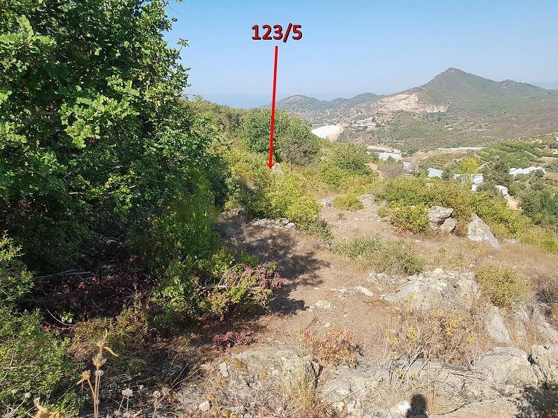 Antalya Alanya Hocalar Köyünde 7.258 m2 Tarla