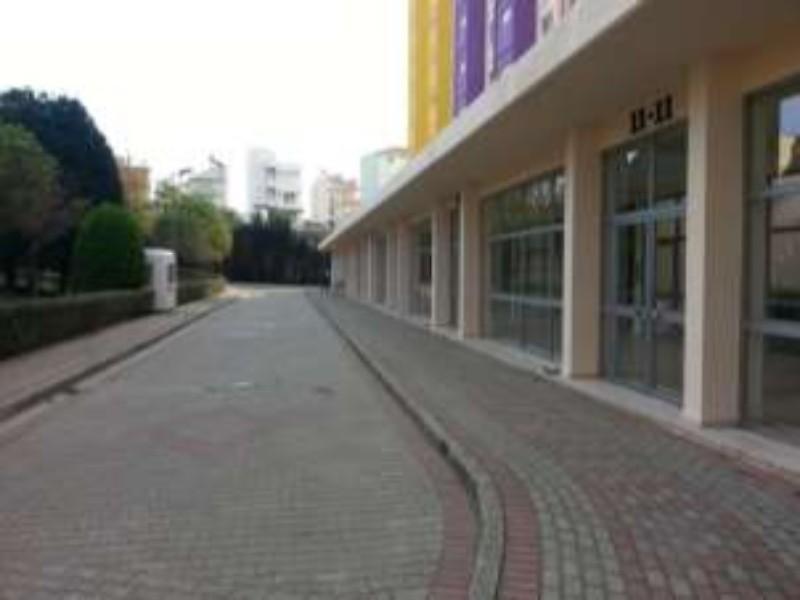 Yalova Armutlu Vakıftan Satılık 65 m2 Daire