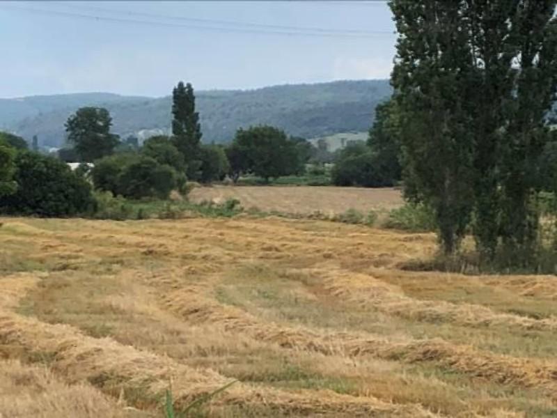 Çanakkale Gelibolu Sütlüce Köyünde 151 m2 Hisseli Arsa