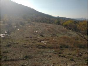 Bilecik İnhisar Samrı Köyünde 2.485 m2 Tarla