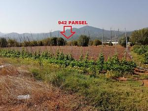 Bilecik Söğüt Tuzaklı Köyünde 1.950 m2 Tarla