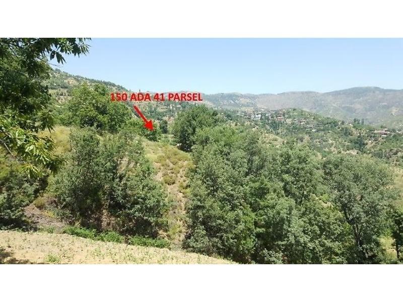 Aydın Nazilli'de 10217 m2 Tarla