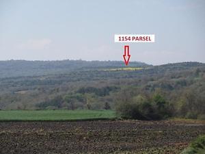 Tekirdağ Süleymanpaşa İnecik Mahallesinde 9.700 m2 Tarla