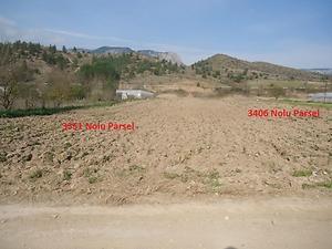 Bilecik Söğüt Tuzaklı Köyünde 2845 m2 Tarla