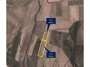 Ağrı Patnos Baltacık Köyünde 34 Dönüm Tarla