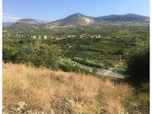 Mersin Yenişehir Karahacılı Köyünde 3.880 m2 Narenciye Bahçesi