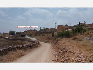 Mardin Savur Gölbaşı Mahallesinde 2 Katlı Kargir Ev ve Arsası