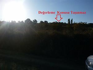 İzmir Bergama İlçesi Kırcalar Mahallesinde 6744 m2 Zeytinlik