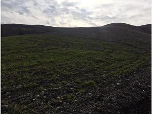Adıyaman Kahta Güdülge Köyünde 9800 m2 Tarla