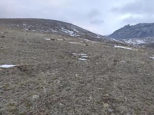 Afyonkarahisar Dinar Göçerli Köyü 10 Dönüm Tarla