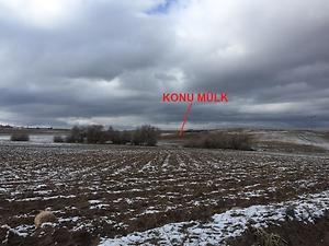 Nevşehir Merkez Çiftlik Köyünde 8005m2 Tarla