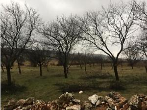 Gaziantep Şehitkamil Büyükpınar Mahallesinde 1348m2 İmarlı Arsa