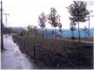 Ankara Haymana Kayabaşı Mahallesinde 1625 m2 İmarlı Arsa