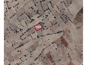 Konya Akören Ağalar Mahallesinde 3.829 m2 Tarla