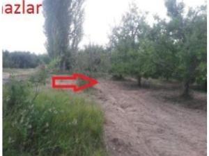 Isparta Gelendost Afşar Mahallesinde 1300 m2 Tarla
