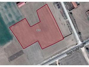 Afyonkarahisar Dinar Okçular Mahallesinde 12900 m2 Tarla