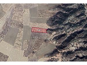 Mersin Gülnar Konur Mahallesinde 6700 m2 Tarla