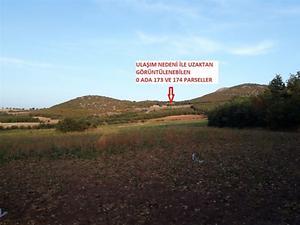 Tokat Zile Söğütözü Köyü'nde 7200 m2 Tarla