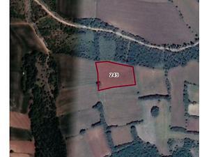 Tokat Zile Söğütözü Köyü'nde 5150m2 Tarla