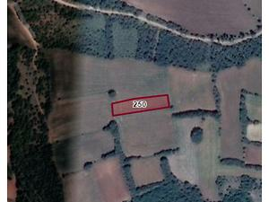 Tokat Zile Söğütözü Köyü'nde 2000m2 Tarla