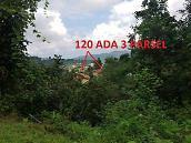 Giresun Keşap Demirci Köyünde 2452 m2 Ev ve Fındık Bahçesi