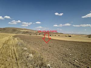 Gümüşhane Köse Akbaba Köyü'nde 9082 m2 Tarla
