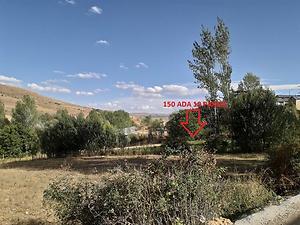 Gümüşhane Köse Akbaba Köyü'nde 2518 m2 Tarla
