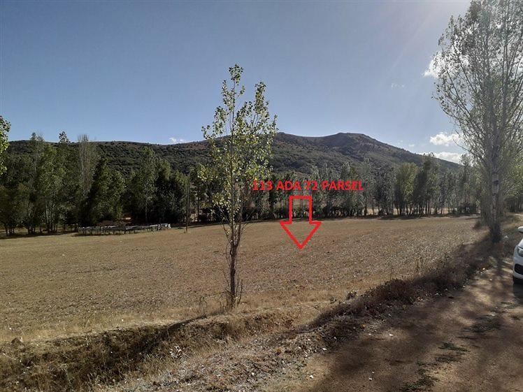 Gümüşhane Köse Akbaba Köyü'nde 8948 m2 Tarla