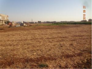Mardin Kızıltepe Koçhisar Mahallesi'nde 778 m2 Konut İmarlı Arsa