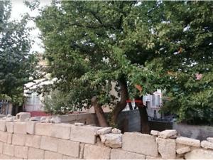 Yozgat Yerköy Hüyük Mahallesi'nde İskanlı 3+1 Daire