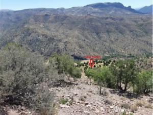 Karaman Merkez Damlapınar Mahallesi'nde 2200 m2 Bağ