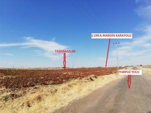 Şanlıurfa Viranşehir Yarpuz Mahallesi'nde 1243 m2 İmarlı Arsa