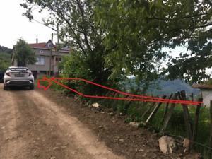 Ordu Kabataş Kayıncık Mahallesi'nde 1424 Fındık Bahçesi