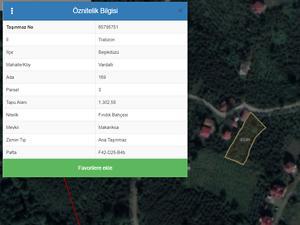 Trabzon Beşikdüzü Vardallı Mahallesi'nde 1302 m2 Fındık Bahçesi