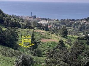 Artvin Kemalpaşa Uzunyalı Mahallesi'nde 4106 m2 Çay Bahçesi